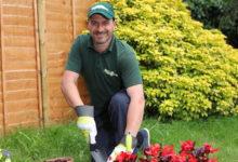 Gardener, Handy Man...